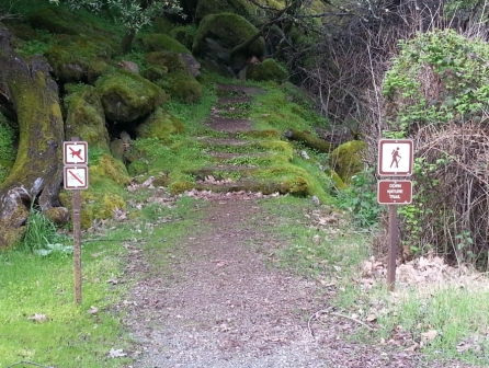 What a surprise...hiking and no dogs!