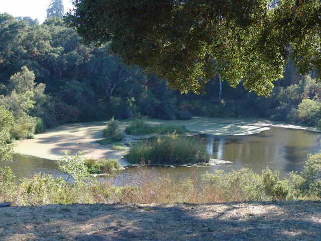 Pinto Lake County Park
