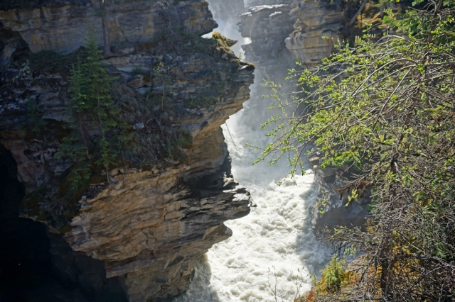 Athabasca Falls ...  the spray feels good but it's truly thundering by.