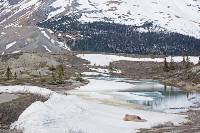 Ice, Jasper NP