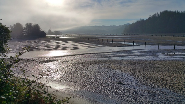 Waking up in Port Siuslaw, Florence OR