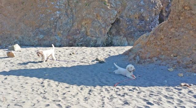 Trindad Beach