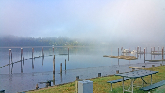 Waking up in Port Siuslaw1